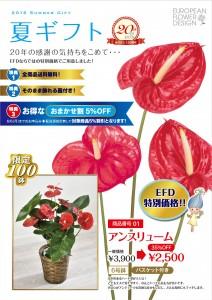 summer_gift2016